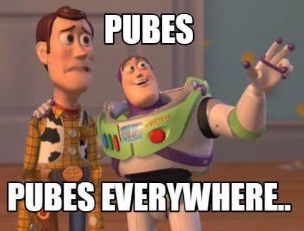 pubes意味