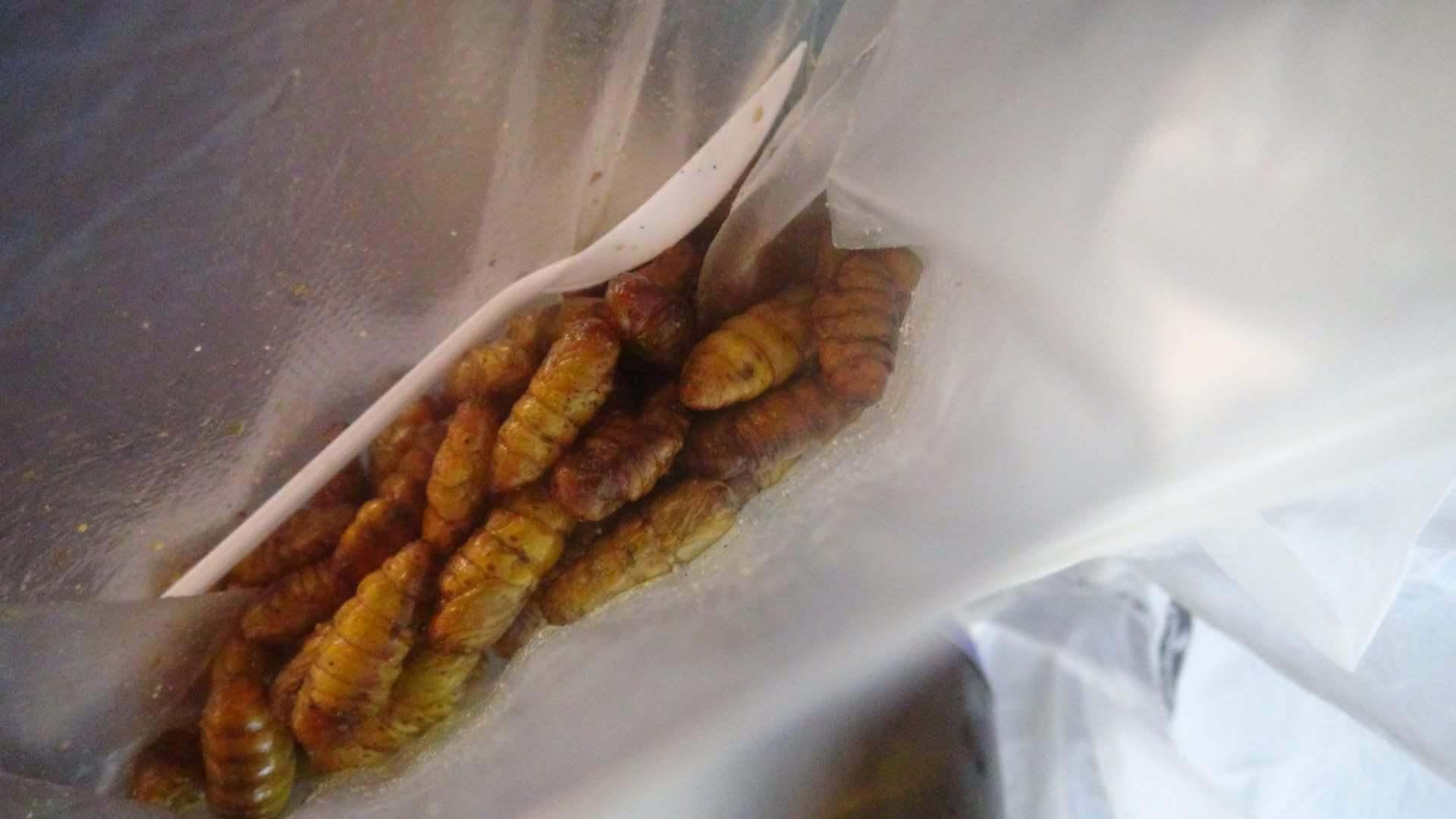 タイの昆虫食