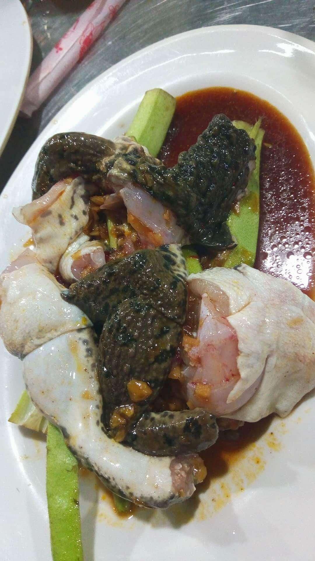 ベトナム食用カエル