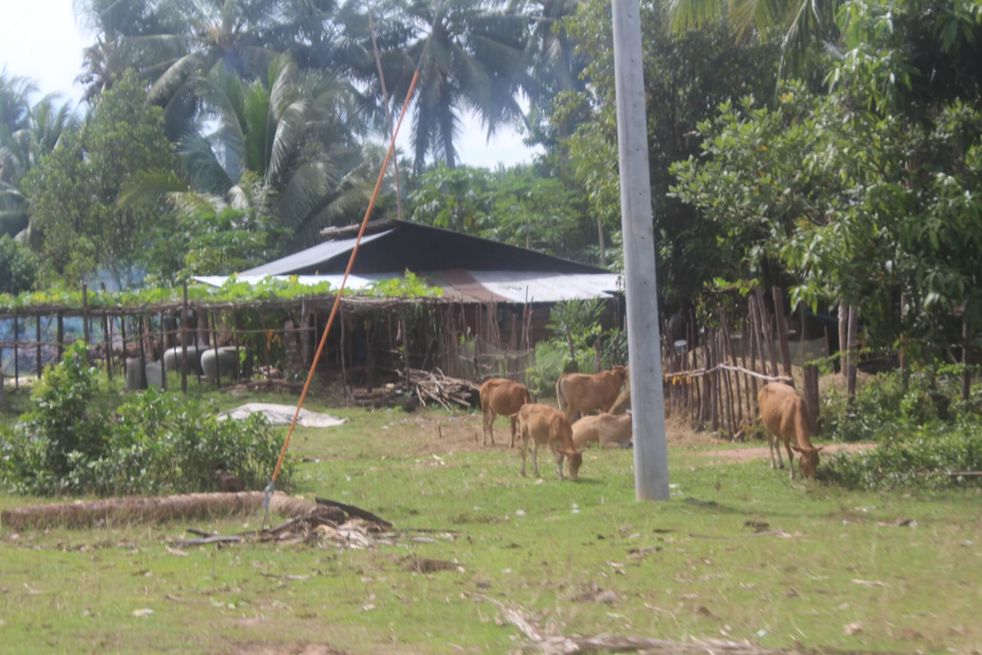 サンボー村